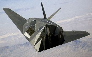 Only 59 of the radar evading F-117 stealth fighters were bought.
